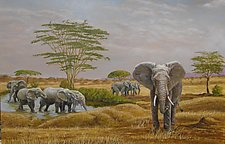 Elephants at a Water Hole by Werner Rentsch (Oil Painting)