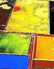 Harvest Time #3 by James Robison (Giclée Print)