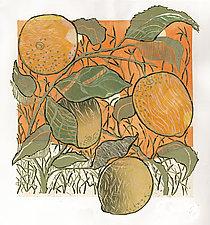 Lemons by Ouida  Touchon (Giclée Print)