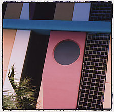 Channelside Palm Fringe by Marcia Treiger (Color Photograph)
