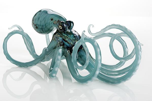 Octopus In Aqua By Jennifer Caldwell And Jason Chakravarty