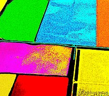 California Palette by James Robison (Color Photograph)