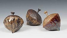 Acorns by Amy Meya (Ceramic Sculpture)