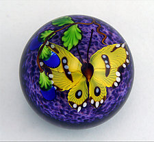 Yellow Butterfly on Purple Paperweight by Mayauel Ward (Art Glass Paperweight)