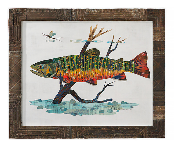 Fly Fishing Collection: Brook Trout (Collage)