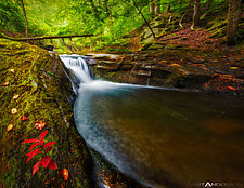 Secret Falls by Matt Anderson (Color Photograph)