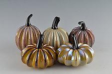 Earth Tone Super Mini Pumpkins by Donald  Carlson (Art Glass Sculpture)