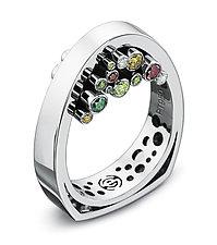 Hollein Ring by Erik Stewart (Platinum & Stone Ring)