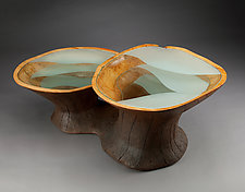 Subterranean Coffee Table by Aaron Laux (Wood & Glass Coffee Table)