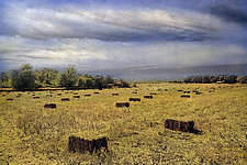 Straw Bales in Field by Elizabeth Holmes (Infrared, Hand Painted Photograph)