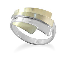 Horizon Adjustable Ring by Debra Adelson (Gold & Silver Ring)