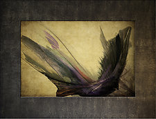 Flight II by Michael Protiva (Mixed-Media Wall Art)