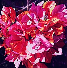 Bougainvillea by Barbara Buer (Oil Painting)