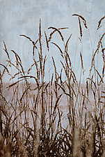 Wild Grasses 4 by Thea Schrack (Color Photograph)