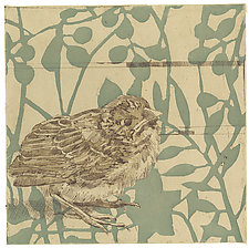 Little Finch by Barbara  Stikker (Etching)